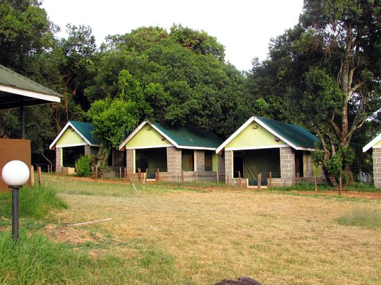 Rhino Tourist Camp: Row of tents