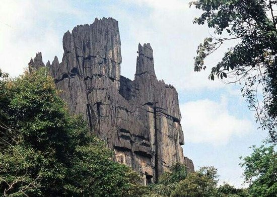 Karnataka, India: it,s super place in forest near by kumta 20 km Goa 130, yellapur 50, sirsi 40 Hubli 125km,so muc