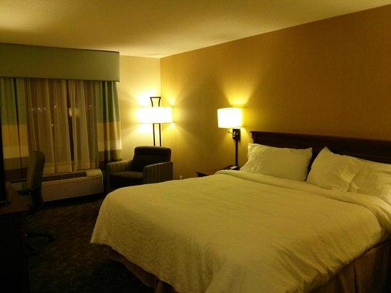 Hampton Inn & Suites Toronto Airport: Hotel room