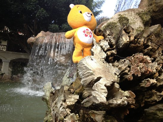 Embassy Suites by Hilton Mandalay Beach Resort: Amego bear exploring