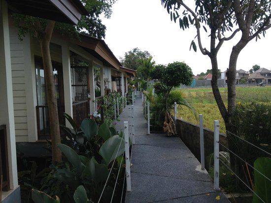 The Studio Bali : Neighborhood