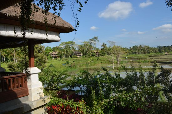 The Ubud Village Resort & Spa : view from restaurant