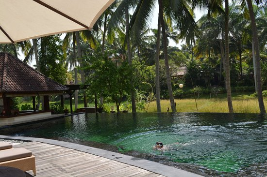 The Ubud Village Resort & Spa : main pool