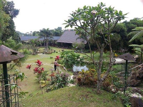 Green Forest Resort: garden