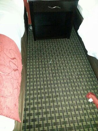 Holiday Inn Express Hotel & Suites Kingsport-Meadowview I-26: This nifty little thing fell out of the bed on the right.