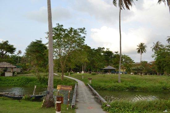 Shiva Samui – The New Name for Samui Beach Village: Ресорт