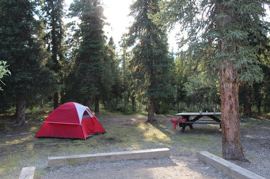 Denali National Park Campgrounds: Savage River Campsite