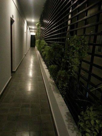 The Kabiki: Verandah outside my room