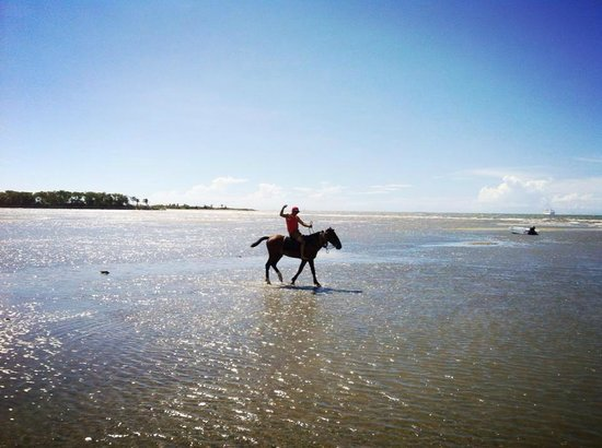 Bamboo Hostel: Go horseback riding right on the beach