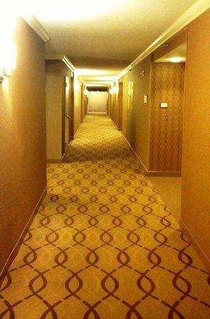 Sheraton Reston Hotel: Hallway