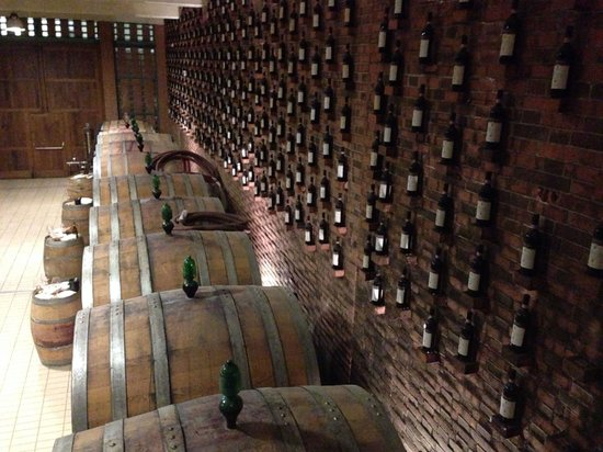 Agriturismo Rivetto: Wine cellar