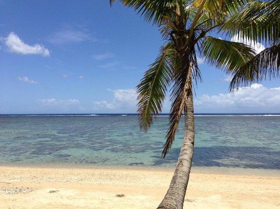 Ocean Terrace Restaurant: View at Bedarra Beach, right outside the hotel