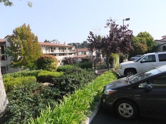 Best Western Casa Grande Inn: Hotel gardens.