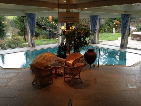 Alpenhotel Oberstdorf: Pool