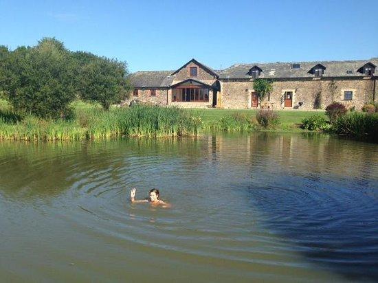 Eastacott Barton : Swimming in the Lake