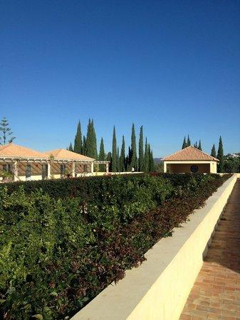 Vila Monte Farm House : Terraço