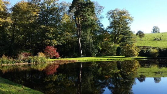 Whitton Hall: Autumn at Whitton
