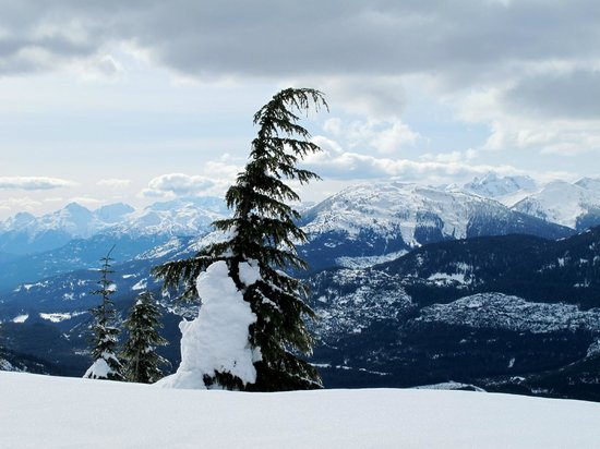 Canadian Wilderness Adventures: View of the valley on intermediate course