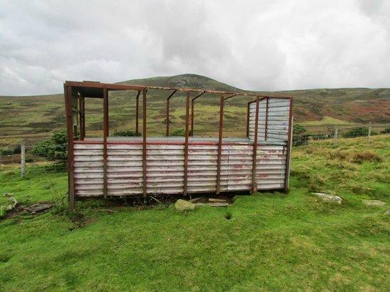 High Force Waterfall: A batter sheep shelter