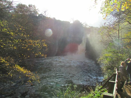 High Force Waterfall: High Force viewed from the Gatekeeper Entrance