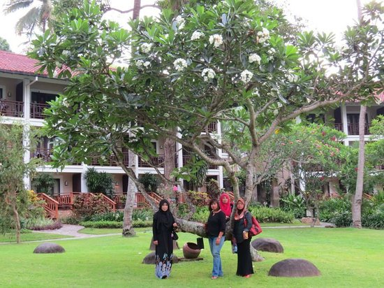 Sheraton Senggigi Beach Resort : Hotel ground