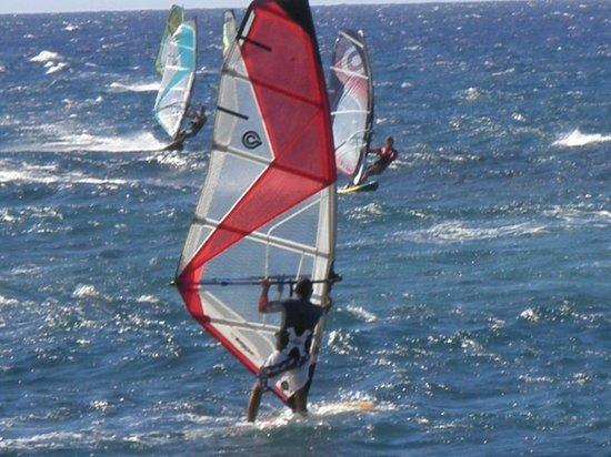 Paia, Havaí: windsufers