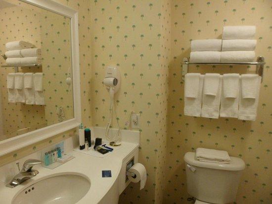 Hampton Inn Hallandale Beach/Aventura : banheiro grande e bonito