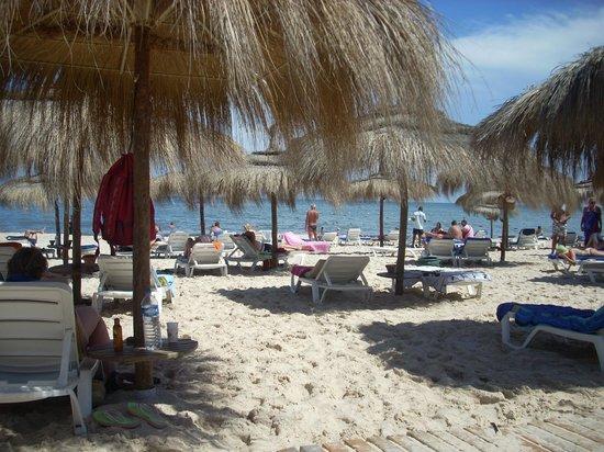 El Mouradi Palm Marina: beach area