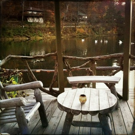 Lake Lucerne Resort: Gazebo view with the geese