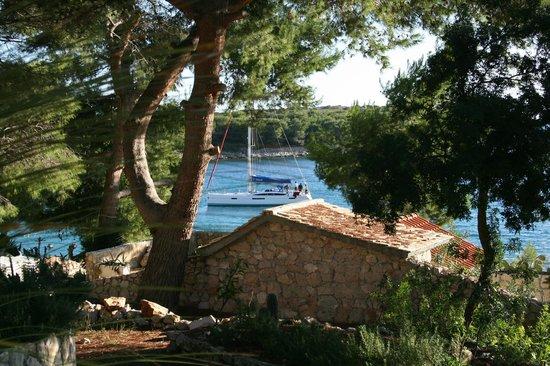 Palmizana Meneghello: Une vue depuis une villa