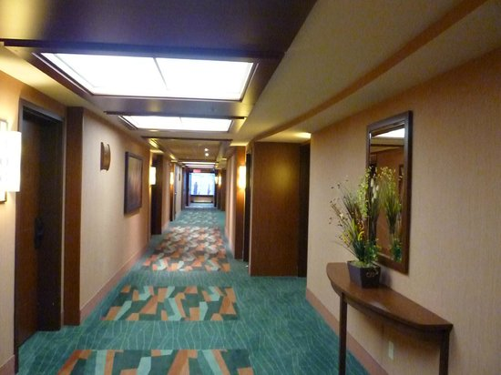 Quality Inn & Suites Levis : Hall way