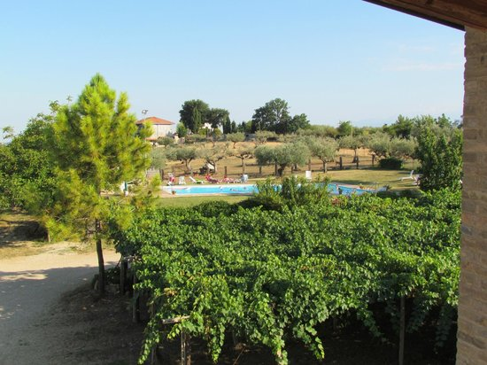 Agriturismo Torre Mannella: The pool area is really fantastic