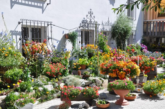 Hotel Seraina: Blumengarten