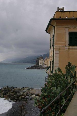 Hotel La Camogliese : promenade camogli