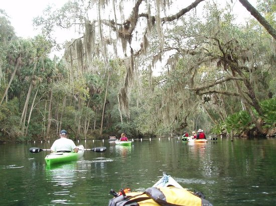 Central Florida Nature Adventures: Our group of paddlers