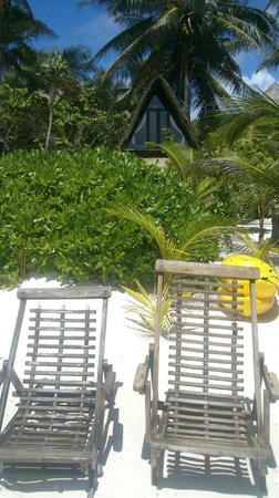 Playa Selva : beach area