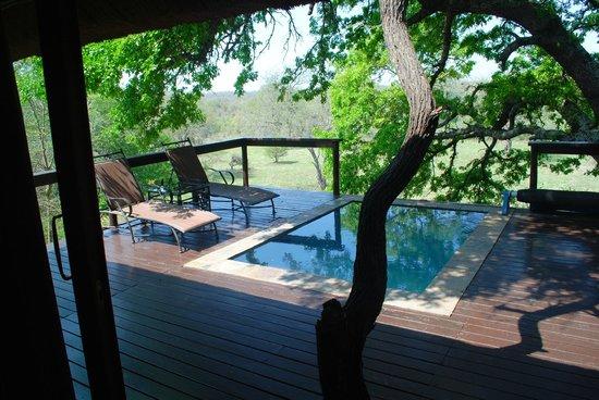 Elephant Plains Game Lodge: Left half of the deck