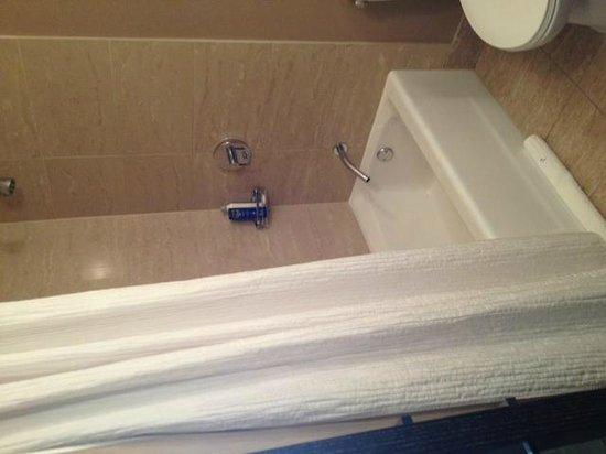 Palomar Chicago, a Kimpton Hotel: Vasca con doccia