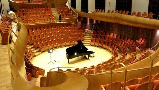 Museo Del Violino.L Auditorium Giovanni Arvedi Del Museo Del Violino Picture Of