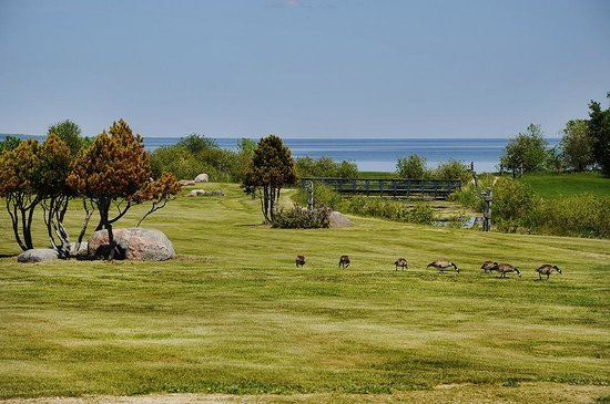 Lakeview Hecla Resort : Grounds