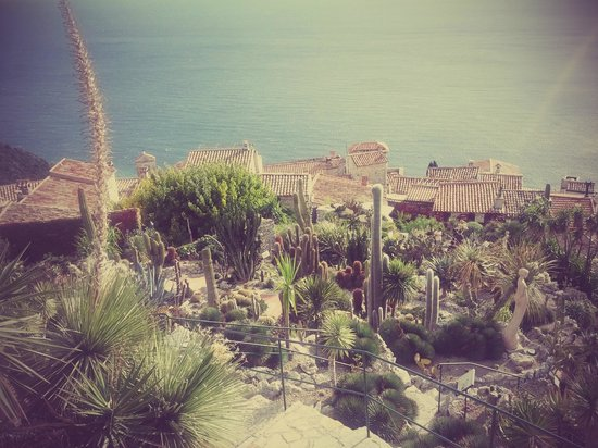 le village d'Eze - Picture of Le Jardin exotique d'Eze ...