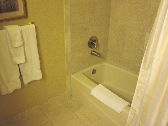Monte Carlo Resort & Casino: MC bathroom 110/13