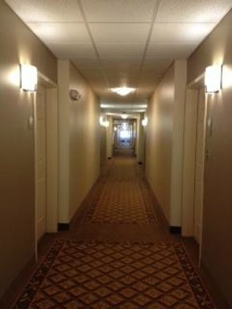 Candlewood Suites Mcalester: hall
