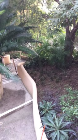 Catalina Beach Resort: Jungle Path to all rooms, pool, dining and bars