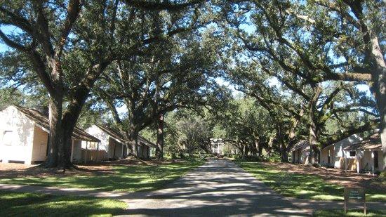 Slave quarters - Picture of Oak Alley Plantation, Vacherie ...