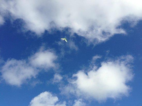 Team Spirit Hang Gliding & Paragliding: flying high!
