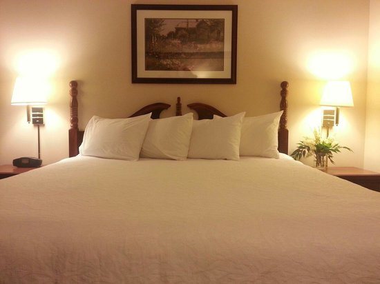 Hampton Inn Bellevue / Nashville-I-40-West: Officially the most comfortable bed ever!