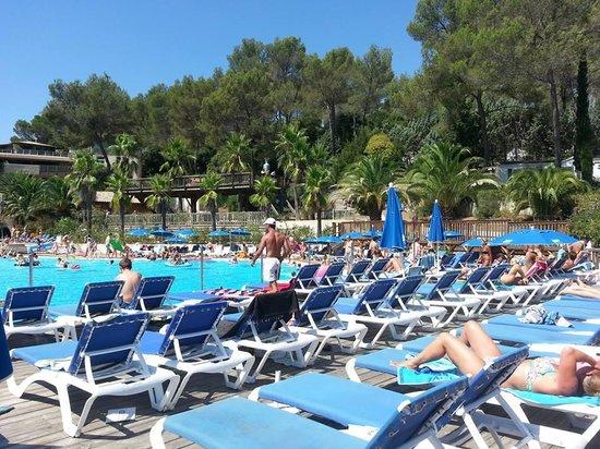 Holiday Green Resort & Spa : pool