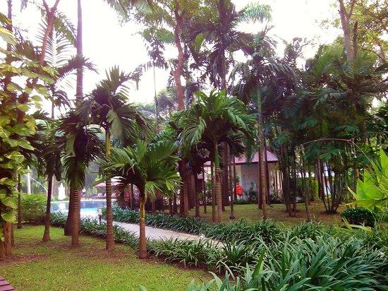 Mida Resort Kanchanaburi: Территория отеля