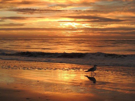 Royal Dunes Resort: quick 5 min to sunrise/bike or walk